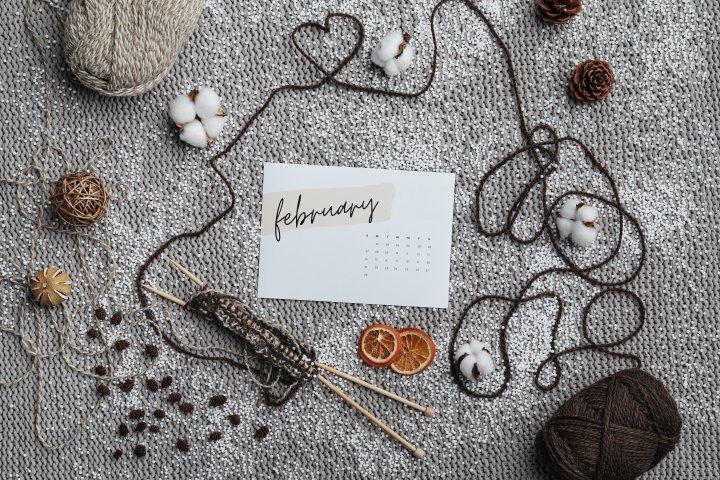 Wild February